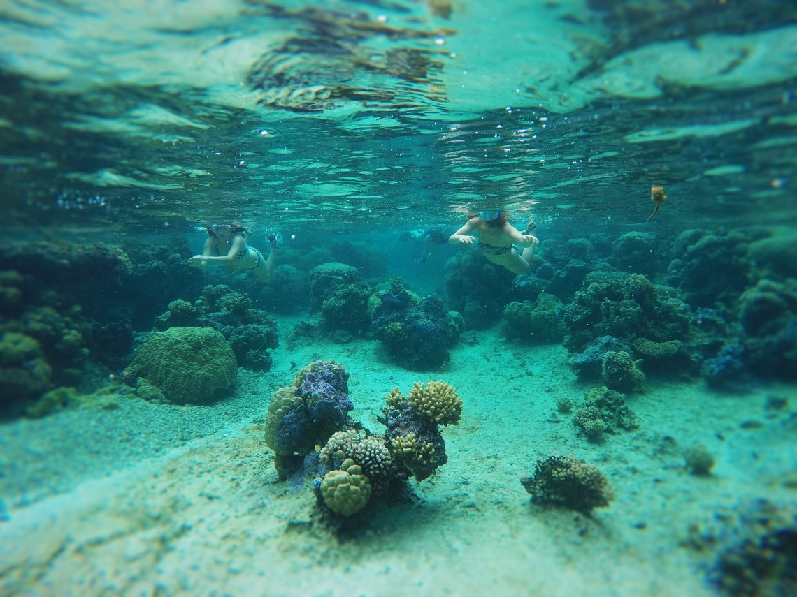 https://tahititourisme.be/wp-content/uploads/2017/08/Bora-Bora-Reef-Discovery-2.jpg