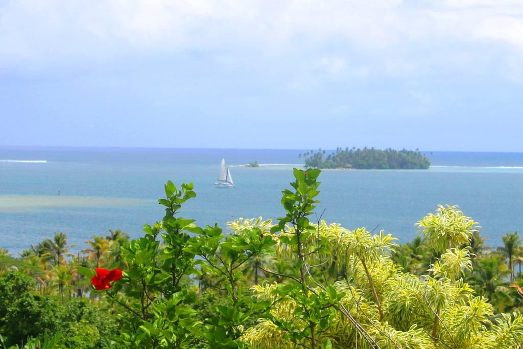 https://tahititourisme.be/wp-content/uploads/2017/08/Couverture-1-36.jpg