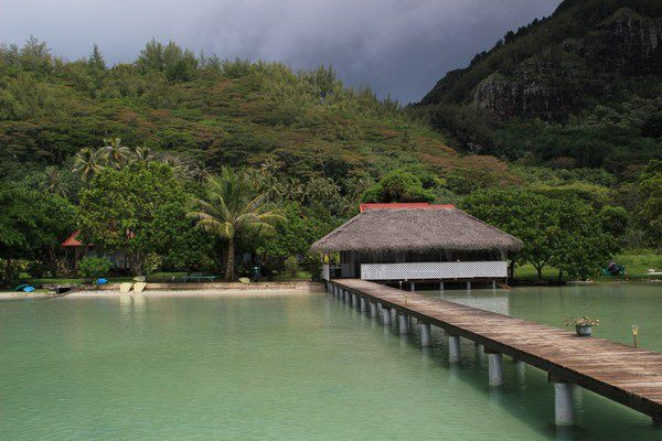 https://tahititourisme.be/wp-content/uploads/2017/08/Couverture-2-16.jpg