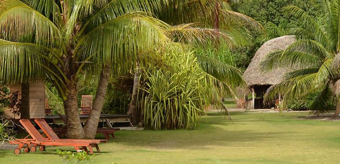 https://tahititourisme.be/wp-content/uploads/2017/08/Couverture-2-7.jpg