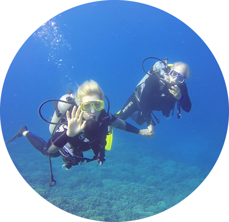 https://tahititourisme.be/wp-content/uploads/2017/08/Divers-in-the-first-try.png