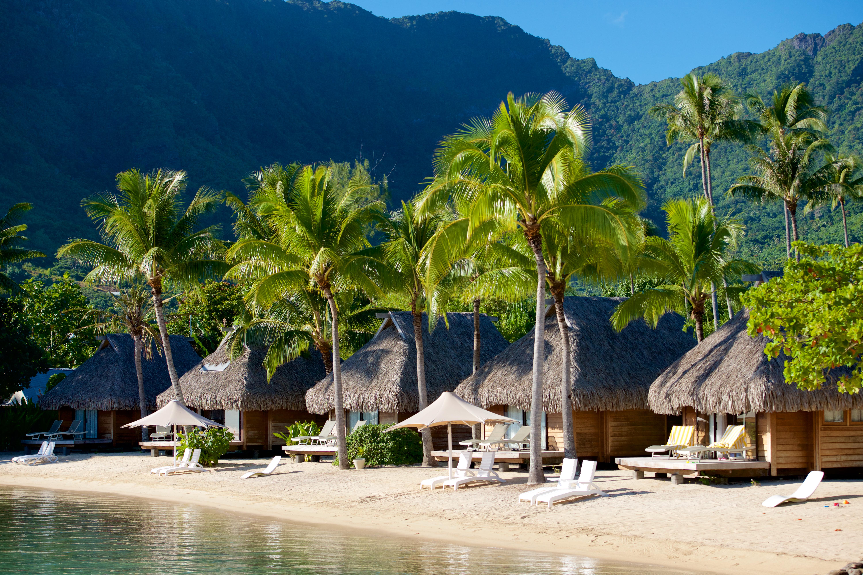 https://tahititourisme.be/wp-content/uploads/2017/08/HEBERGEMENT-Manava-Beach-Resort-and-Spa-Moorea-2-Tim_McKenna.jpg
