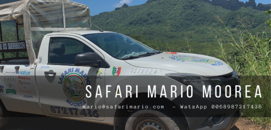 https://tahititourisme.be/wp-content/uploads/2017/08/Safari-Mario-Moorea.png
