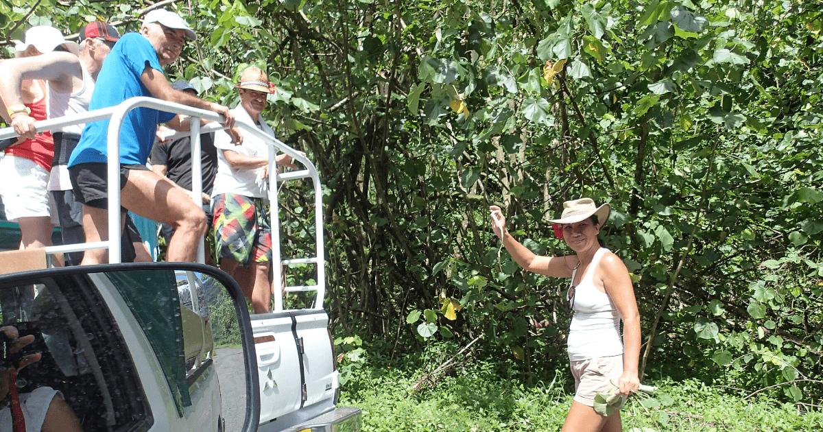 https://tahititourisme.be/wp-content/uploads/2017/08/Tahiti-Safari-Expeditions_1140x500-min.png