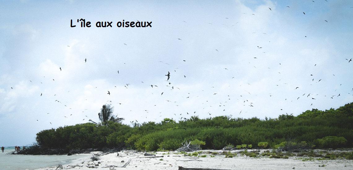 https://tahititourisme.be/wp-content/uploads/2017/08/Tahiti-Voile-et-Lagon-photo-de-couv-2.jpg