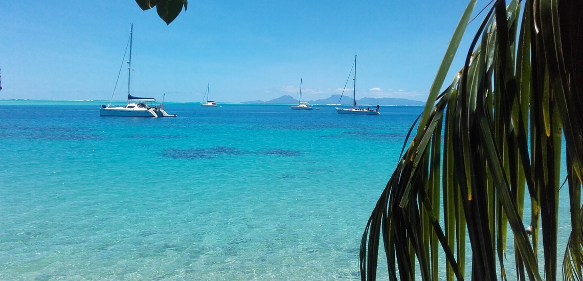 https://tahititourisme.be/wp-content/uploads/2017/08/miticharter_1140x550px-1.png