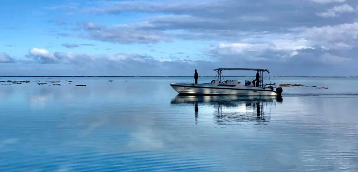 https://tahititourisme.be/wp-content/uploads/2017/08/mooreaecotours_1140x550px.png