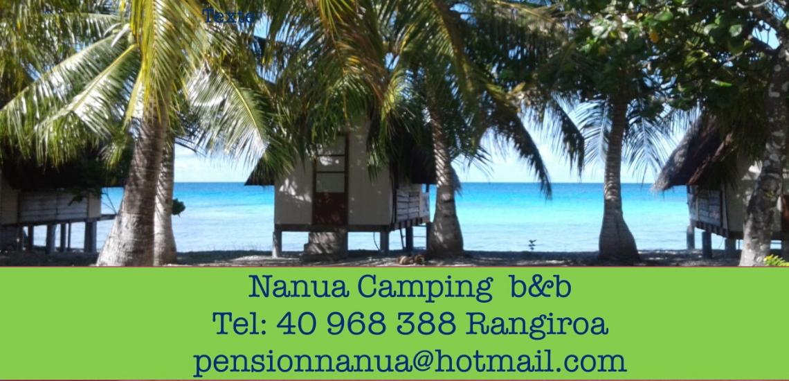 https://tahititourisme.be/wp-content/uploads/2017/08/nanuacamping_1140x550.png
