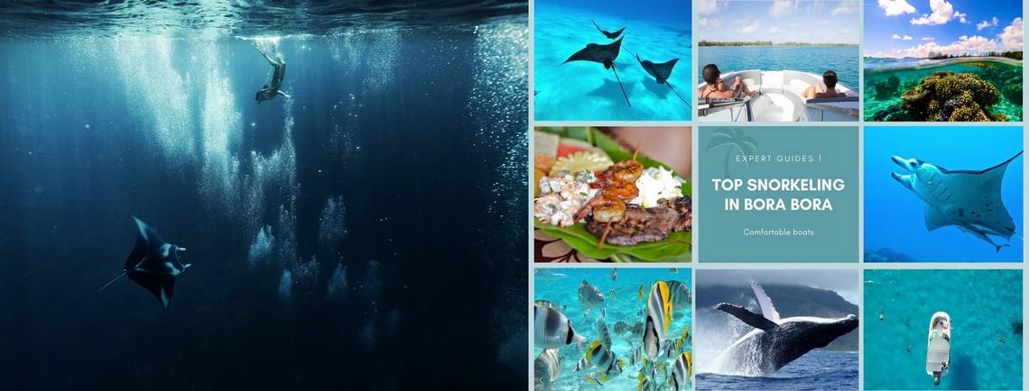 https://tahititourisme.be/wp-content/uploads/2017/08/reef-discovery-bora-bora.jpg