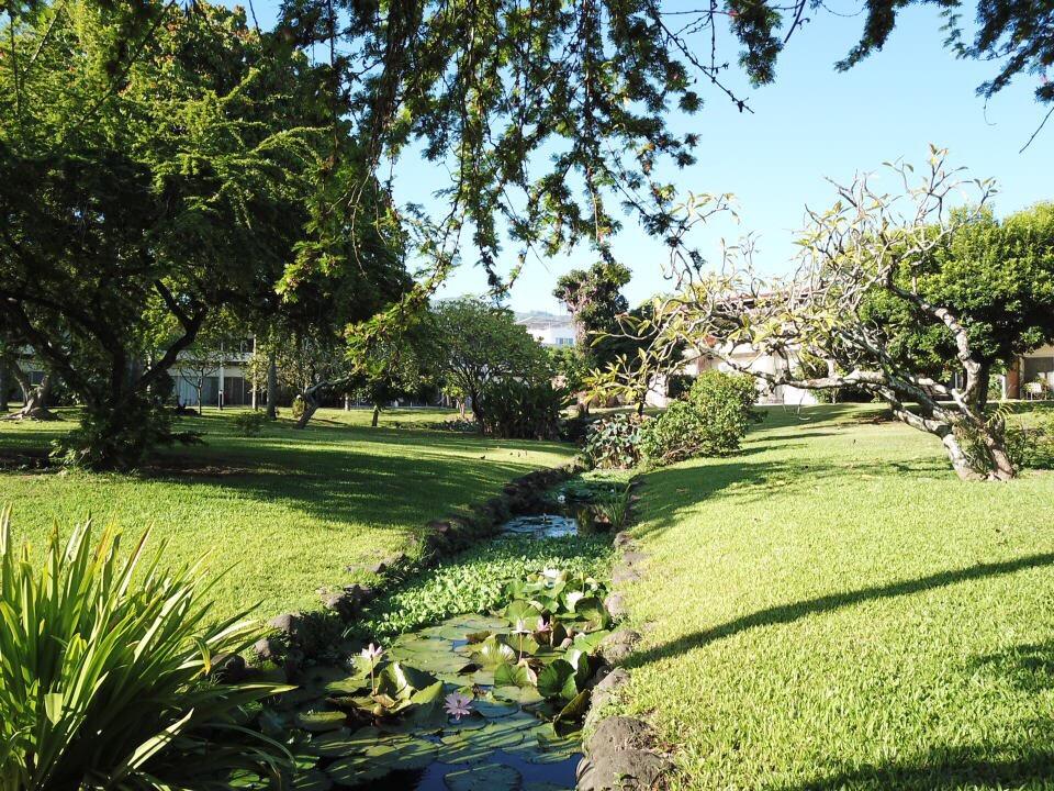https://tahititourisme.be/wp-content/uploads/2017/09/jardin-vue-1.jpg