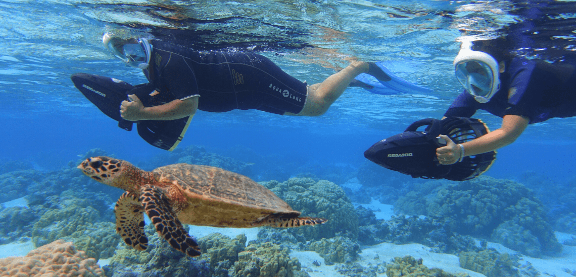 https://tahititourisme.be/wp-content/uploads/2018/02/mooreawatergames_1140x5502-min.png