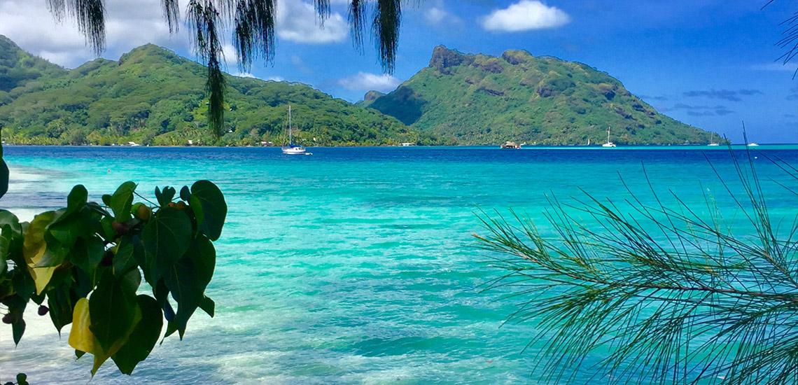 https://tahititourisme.be/wp-content/uploads/2018/05/ACTIVITES-TERRESTRES-Green-Tours-Huahine-1.jpg