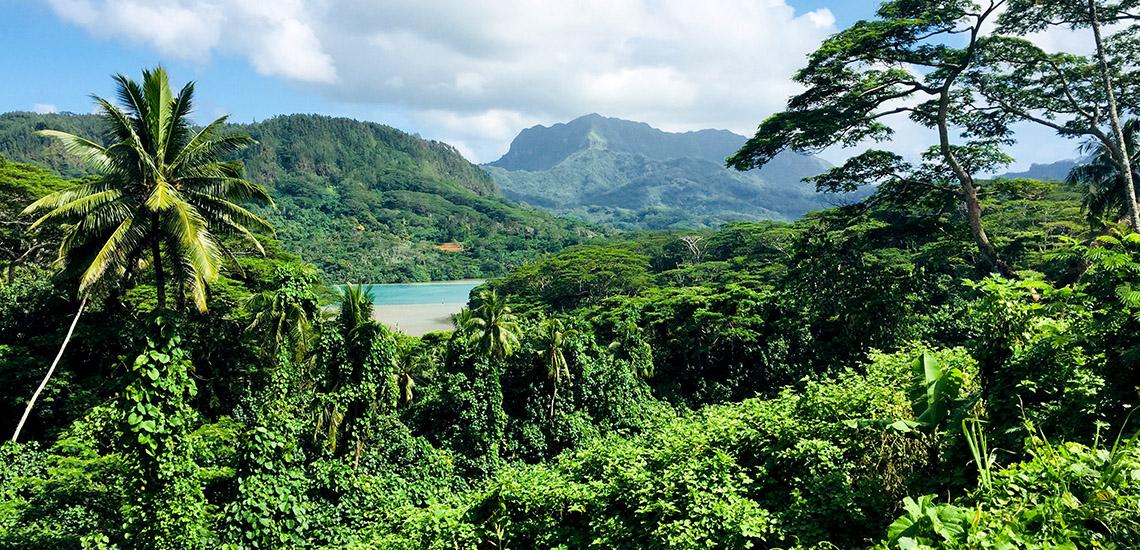 https://tahititourisme.be/wp-content/uploads/2018/05/ACTIVITES-TERRESTRES-Green-Tours-Huahine-2.jpg