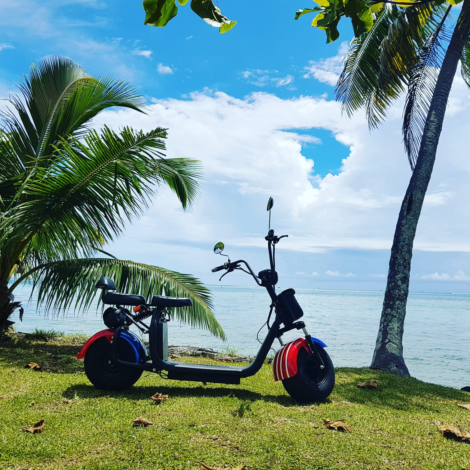 https://tahititourisme.be/wp-content/uploads/2019/04/4456B30F-4411-4897-BB78-692F756B865F.jpeg