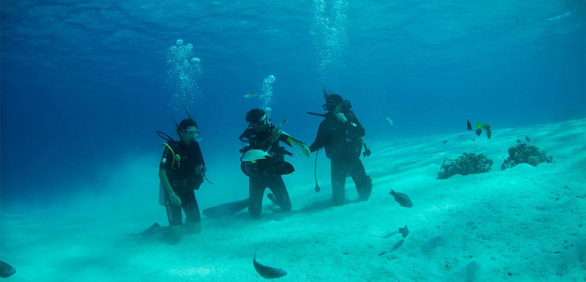 https://tahititourisme.be/wp-content/uploads/2019/04/Tahiti-Nui-Diving-1140x550.jpg