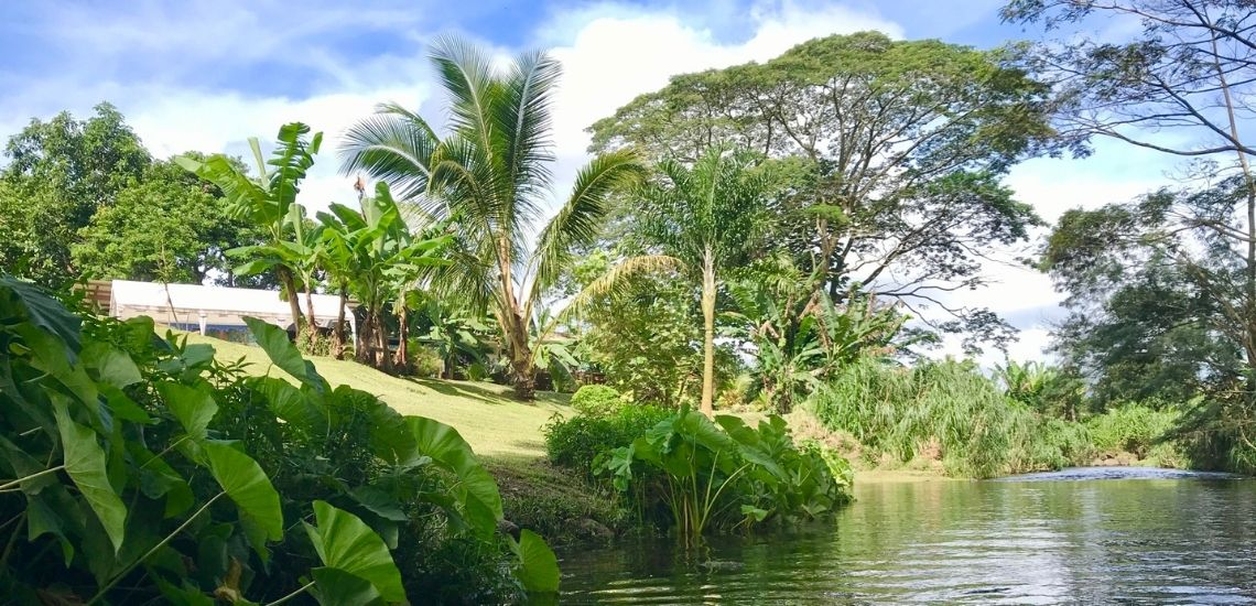 https://tahititourisme.be/wp-content/uploads/2020/03/Teanavai_Camping_1140x5550px.jpg