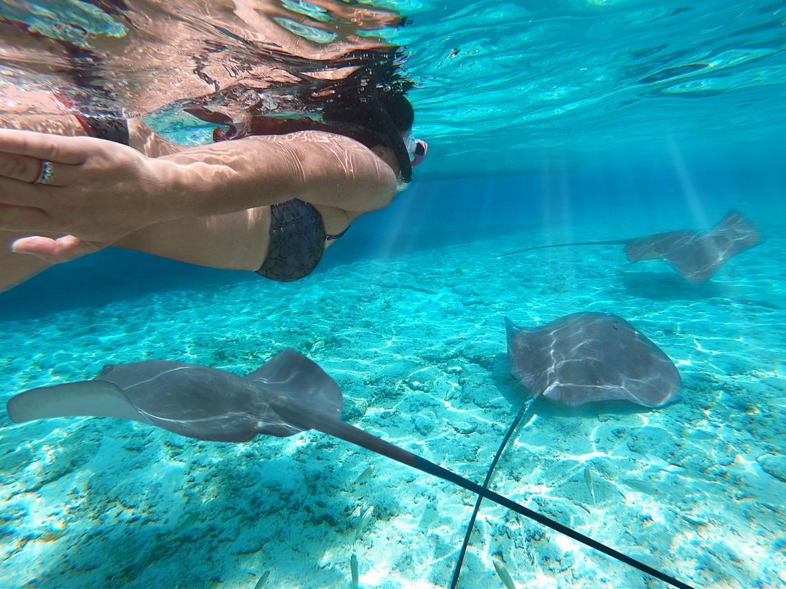 https://tahititourisme.be/wp-content/uploads/2020/11/Lagoon-Srvice-Bora-Bora-2.jpg