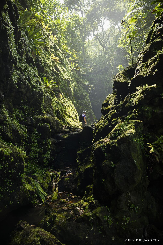 https://tahititourisme.be/wp-content/uploads/2021/04/benthouard_tepari_hike_0242.jpg