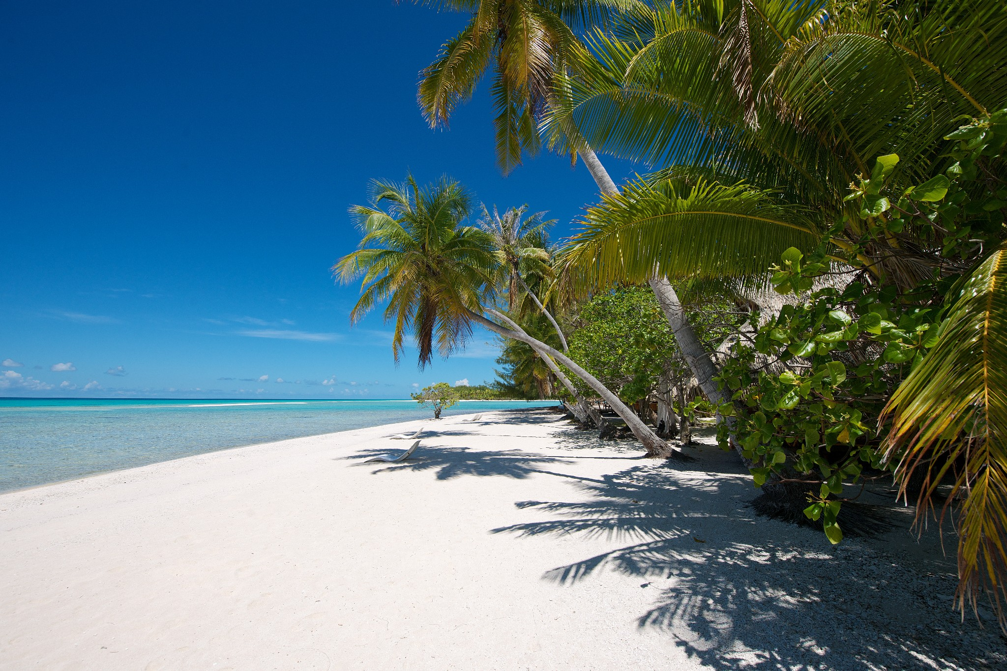 https://tahititourisme.be/wp-content/uploads/2021/05/Polynesie-Kia-Ora-Sauvage-26.jpg