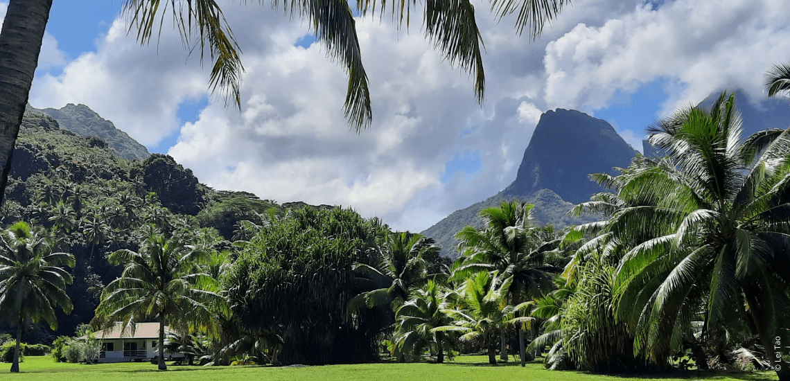 https://tahititourisme.be/wp-content/uploads/2021/05/residenceapaura_1140x550-1-min.png
